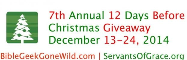 7th Annual 12 Days Before Christmas Giveaway – Day 4