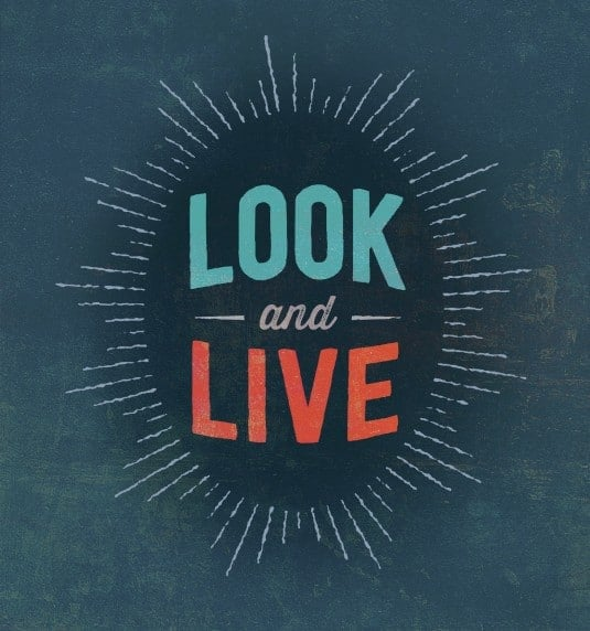 Look and Live by Matt Papa