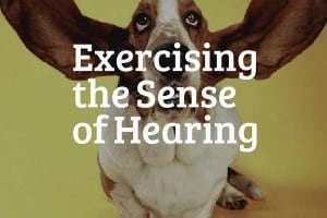 Exercising the Sense of Hearing