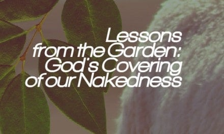 Lessons from the Garden: God's Covering of our Nakedness