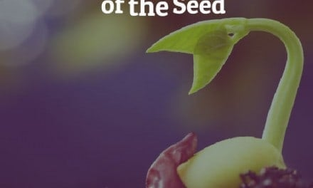 Lessons From the Garden: The Concept of the Seed