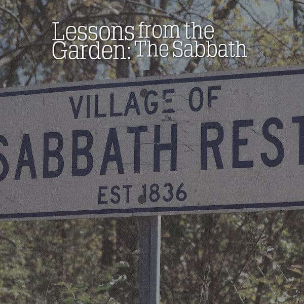 Lessons From the Garden: The Sabbath