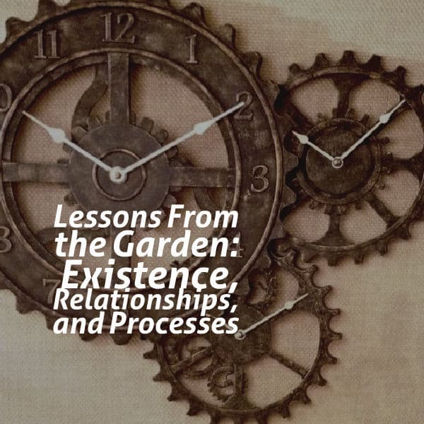 Lessons From the Garden: Existence, Relationships, and Processes