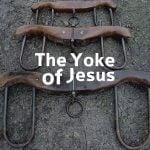 The Yoke of Jesus