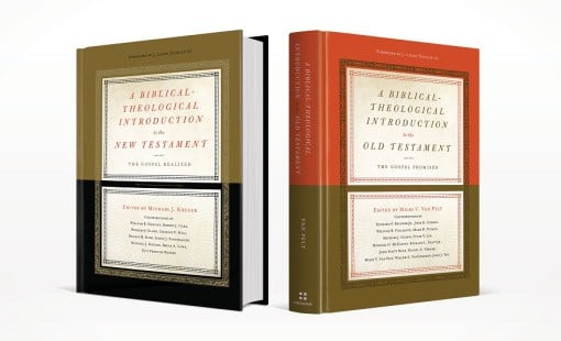 A Biblical-Theological Introduction to the Old and New Testament
