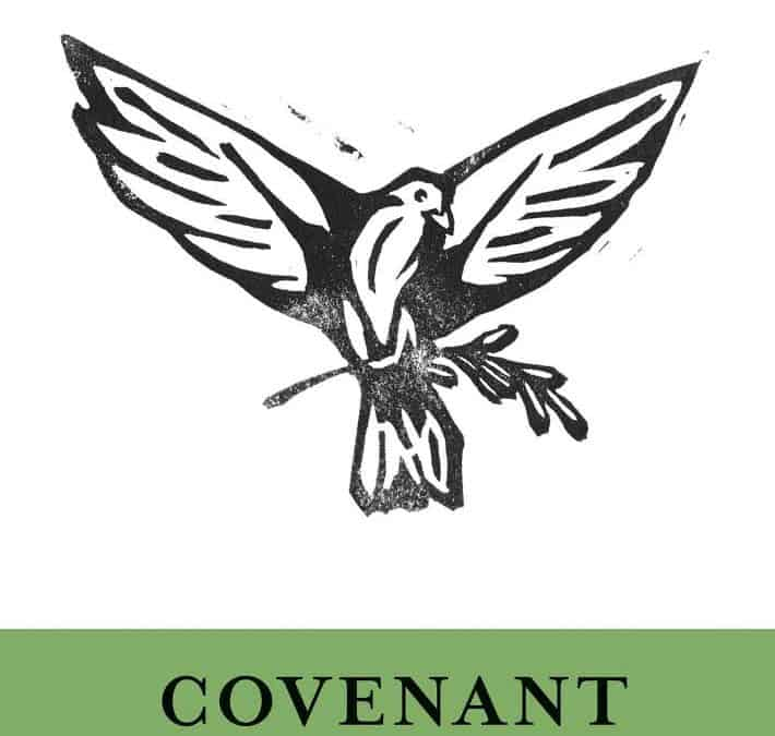 Covenant and God's Purpose for the World – Thomas Schreiner (2017)