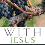 With Jesus: Finding Your Place in the Story of Christ – Brian G. Hedges (2017)