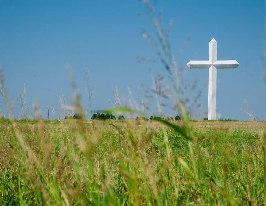 The Covenant of Grace in the New Testament