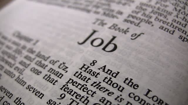 , The Problem of Evil in the Book of Job, Servants of Grace, Servants of Grace