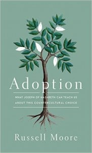 , Adoption: What Joseph of Nazareth Can Teach Us About This Countercultural Choice, Servants of Grace
