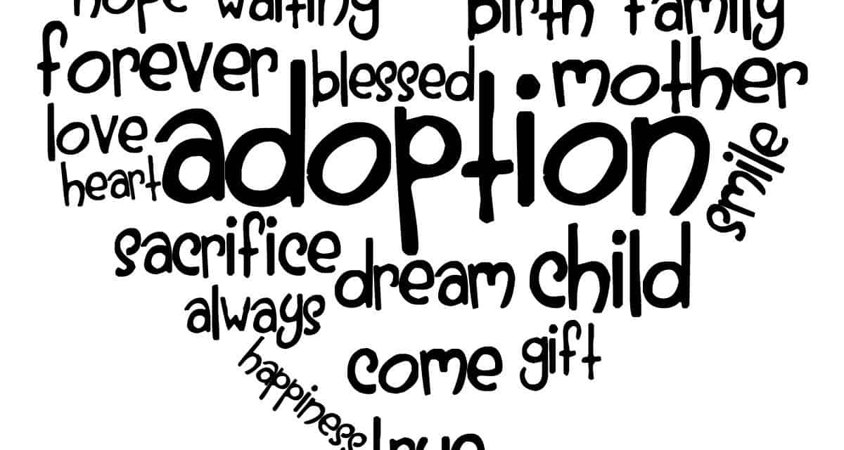 Lessons, Lessons on the Journey of Adoption, Servants of Grace