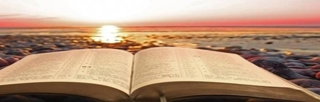 Tim Bertolet – The New Testament's Use of the Old Testament: A Seed Coming to Blossom