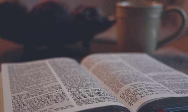 Jason Allen – How Do You Know if a Sermon is Expository?