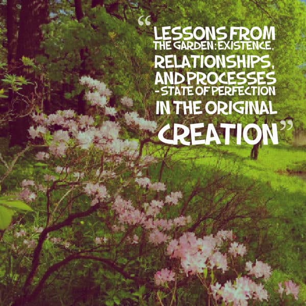 Existence, Lessons From the Garden: Existence, Relationships, and Processes – State of Perfection in the Original Creation, Servants of Grace
