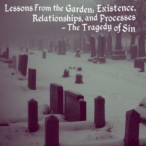 Existence, Lessons From the Garden: Existence, Relationships, and Processes – The Tragedy of Sin, Servants of Grace, Servants of Grace