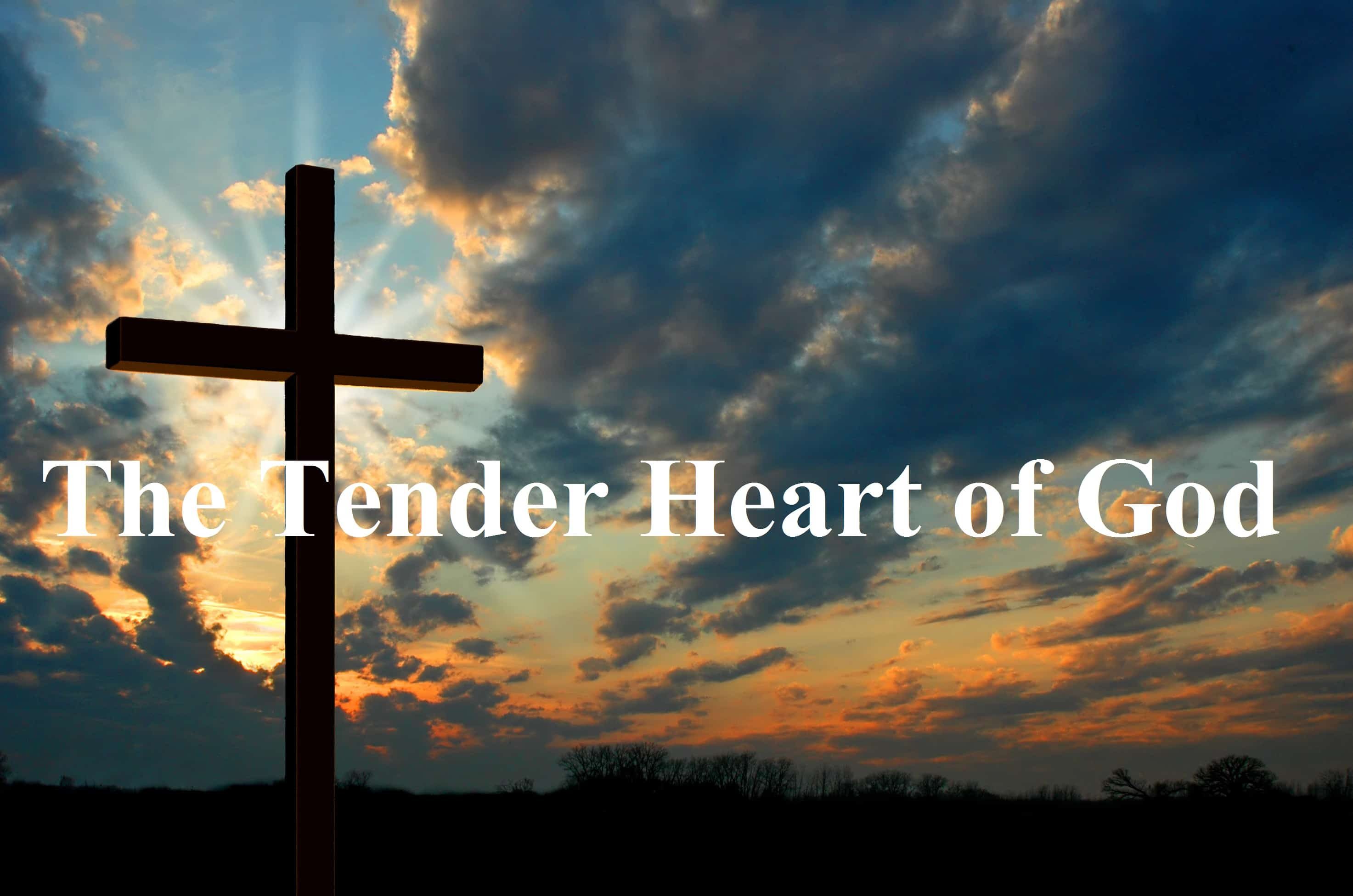 Heart, The Tender Heart of God, Servants of Grace, Servants of Grace