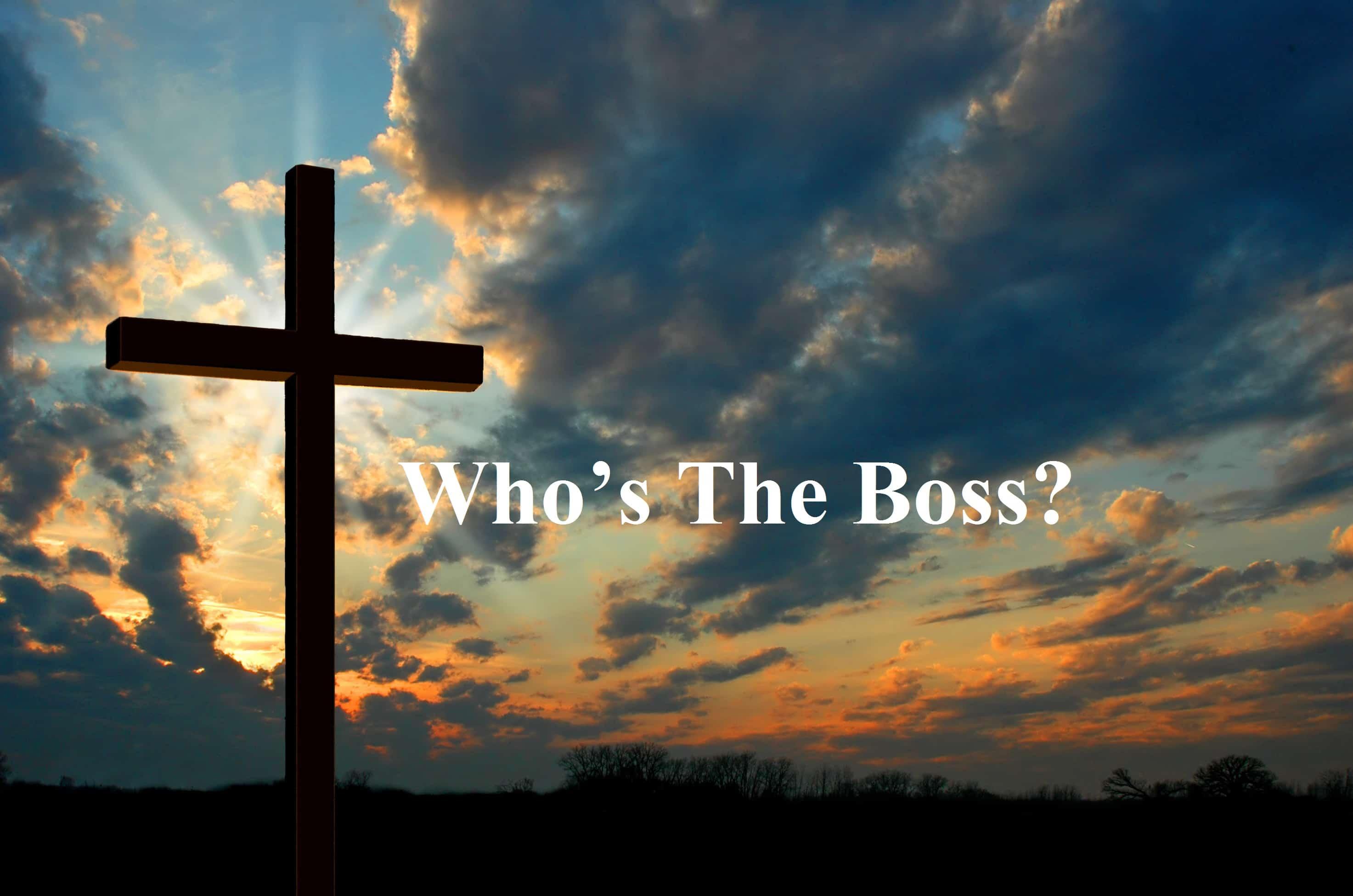 Boss, Who's The Boss?, Servants of Grace, Servants of Grace