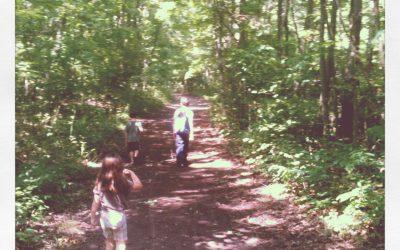 Walking in the Way of Jesus