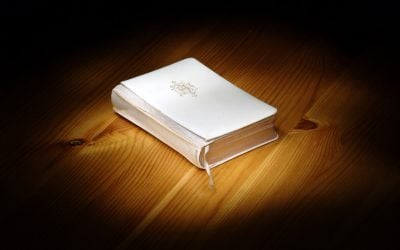 To Focus on Jesus and His Resurrection—Spotlight the Bible