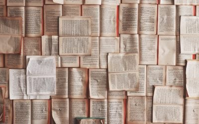The Need for Word Studies
