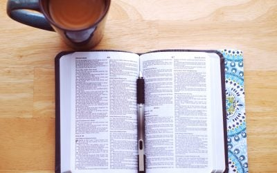 Bible Reading: Duty or Delight?: Guidance on Bible Reading