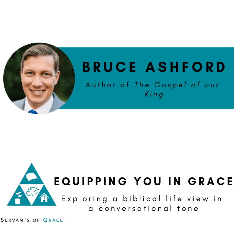 King, Bruce Ashford– The Gospel of Our King: Bible, Worldview, and the Mission of Every Christian, Servants of Grace, Servants of Grace