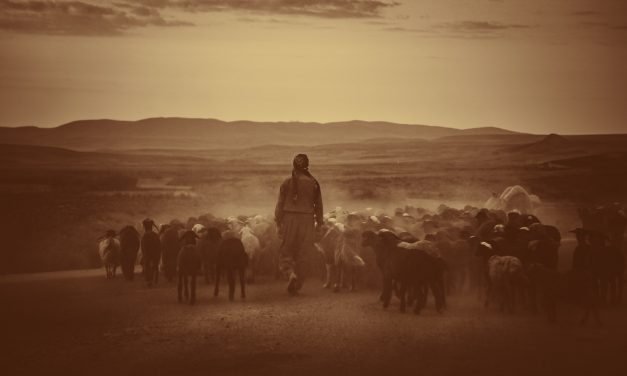 The Sufficiency of Scripture and Pastoral Ministry