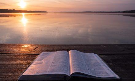 Worldwide, God Is at Work Worldwide—Even Here, Servants of Grace