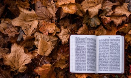 Four Scriptures to Read When You're Dealing with Lack of Assurance