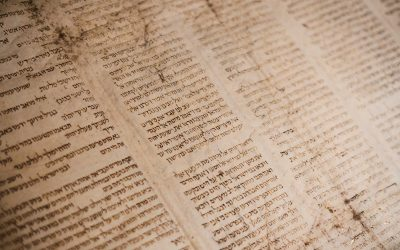 The Unfolding of the Gospel in Hebrews