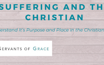Blogging, Why I Am Blogging Through Job, Servants of Grace, Servants of Grace