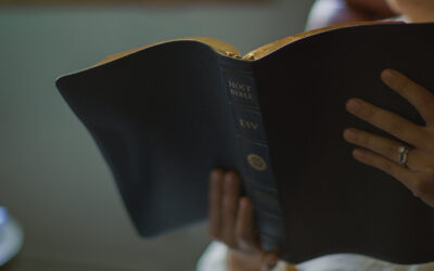 Daily Bites Of God's Word on Psalm 119:113-120
